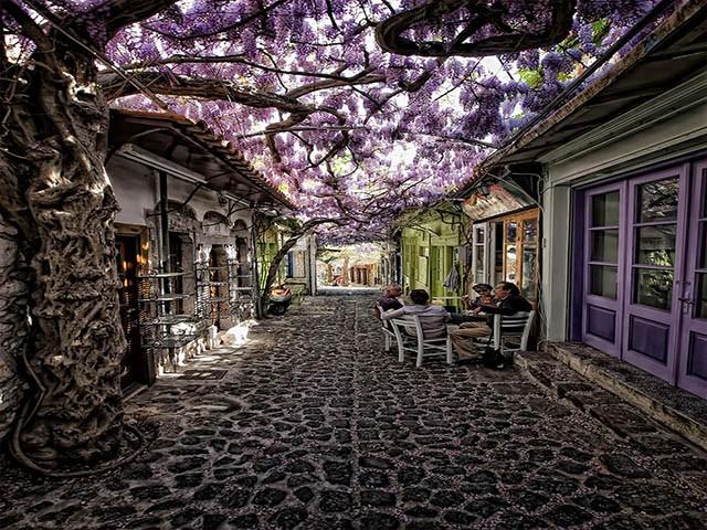 Molyvos, Midilli, Yunanistan