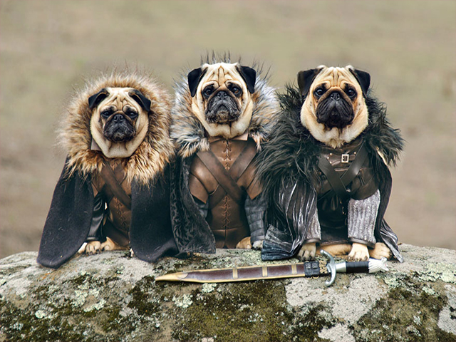 Robb Stark, Ned Stark ve Jon Snow