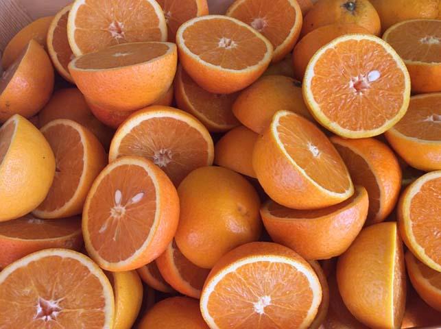 Portakal, mandalina ve greyfurt
