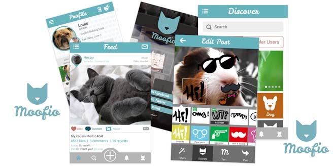 artik hayvanlarin da bir sosyal agi var kulecanbazi com 660x330 - Artık Hayvanların Da Bir Sosyal Ağı Var!