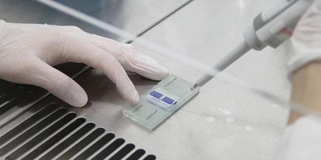 kanser asisini yaptiran test edebilecek kulecanbazi com 660x330 - Kanser Aşısını Yaptıran Test Edebilecek