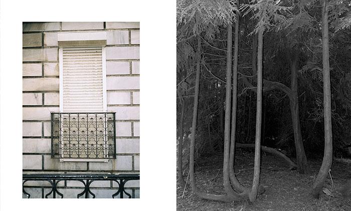 pandemi gunlerinde fotograf 2 kulecanbazi com 700x420 1 - Pandemi Günlerinde Fotoğraf