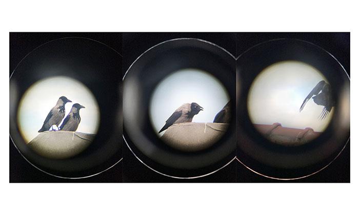 pandemi gunlerinde fotograf 3 kulecanbazi com 700x420 1 - Pandemi Günlerinde Fotoğraf